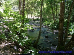 Sutter Creek Road - 022