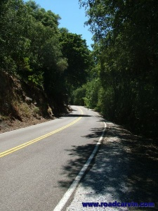 Sutter Creek Road - 035