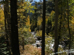 A peek at the West Fork of the Carson River