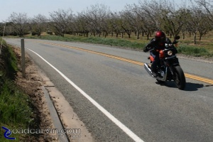 An entertaining ride: The 2009 XR1200 Sportster at speed