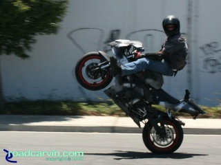 CBR954RR - Highchair Wheelie: Smile for the camera. Nice highchair wheelie by this CBR954RR stunt rider.