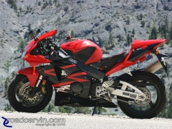 Independence Day Ride - CBR954RR Cliffhanger