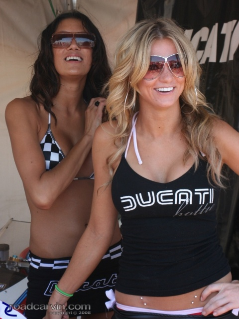 2008 MotoGP - Ducati Hotties