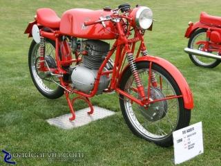 1956 MV Agusta Squalo Racer (II): 1956 175cc MV Agusta Squalo racer.