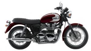 2008 Triumph T100