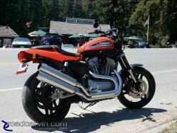 2009 Harley-Davidson Sportster XR1200 - Alice's Restaurant
