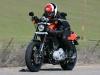 2009 Harley-Davidson Sportster XR1200 - Flat Track Style
