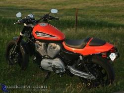 2009 Harley-Davidson Sportster XR1200 - Green Grass