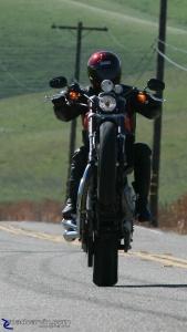 2009 Harley-Davidson Sportster XR1200 - Wheelie
