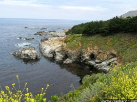 Coastal Caves: Caves located of the Big Sur Coastline south of Carmel on Highway 1.