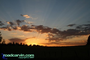 Friday Photo  - Sunburst over Pine Grove (III)
