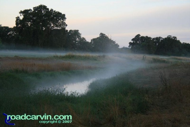 Friday Photo - The Fog (II)
