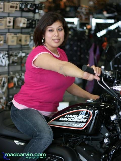 Warren's Harley-Davidson - Maria on a 883R Sportster | Roadcarvin